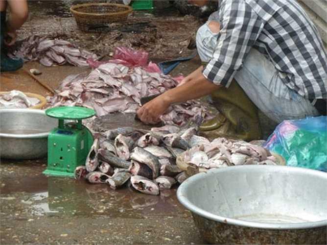 nên chỗ cá còn lại chị phải lọc lấy thịt bán cho các của hàng bún cá với giá rẻ mạt với hy vọng gỡ gạc lại đồng vốn.(Ảnh: GDVN)