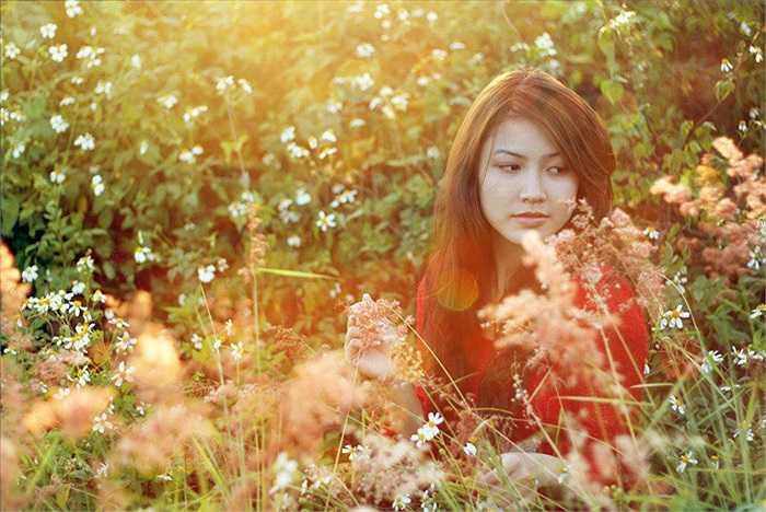 Cô hoa khôi xinh đẹp lạc vào giữa rừng hoa