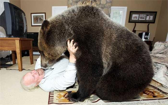 Ông Mark Bumas (61 tuổi) đùa nghịch cùng gấu cưng Billy trong nhà riêng ở Abbotsford, Canada.