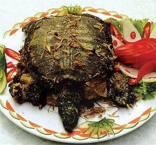 Một nhóm nhà nghiên cứu ở Tô Châu (Trung Quốc) cũng đã dùng dịch tiết mai rùa để làm giảm hiện tượng chảy máu do trĩ, chống lại hiện tượng giảm bạch cầu do hóa trị liệu. Nghiên cứu cũng cho thấy máu rùa có chức năng ức chế tế bào ung thư.