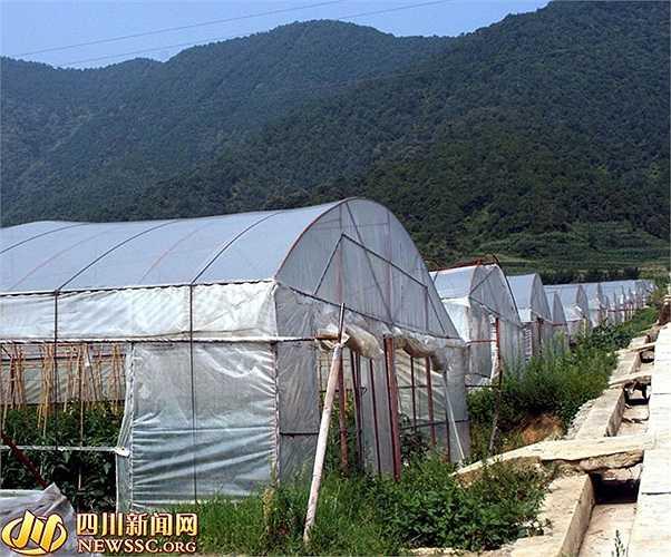 Theo truyền thông Trung Quốc, hàng năm làng này lấy tiền từ lợi nhuận hợp tác xã chia cho người dân trong lành tùy theo cổ phần