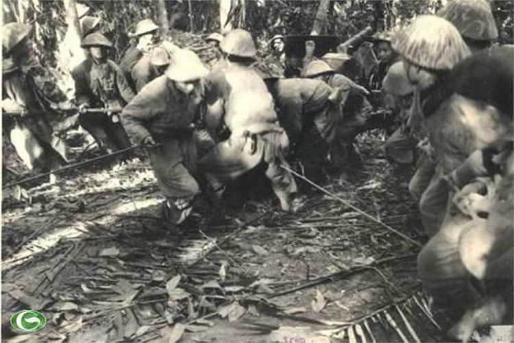 Ở mặt trận Điện Biên Phủ tham gia chiến dịch, lực lượng ta có 3 đại đoàn bộ binh (308, 312, 316), trung đoàn bộ binh 57 (đại đoàn 304), đại đoàn công binh pháo binh 351. Tư lệnh chiến dịch là Đại tướng Võ Nguyên Giáp. (Trong ảnh: Kéo pháo vào trận địa)