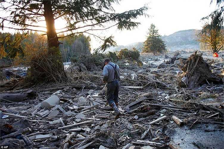 Dave Norman, nhà địa chất học bang Washington, cho hay: 'Đây là một trong những vụ sạt lở đất lớn nhất mà tôi từng thấy'