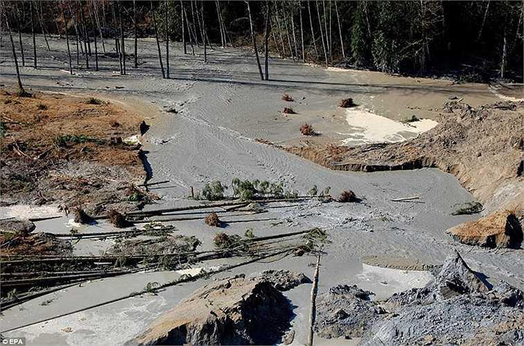 Ông Jay Inslee đã ban bố tình trạng khẩn cấp, đồng thời thừa nhận việc tìm kiếm cứu hộ trên địa hình ngập bùn là cực kỳ nguy hiểm