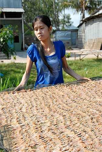 Bình quân cứ 4 ký nhái tươi sẽ cho một ký khô. Giá nhái khô hiện thời 540.000 đồng/kg, còn vào dịp tết khô nhái lên 650.000 đ/kg mà không có hàng để bán.(Theo Zing)