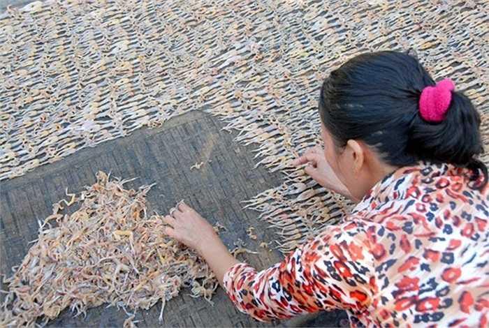 Nhái khô được phơi trên giàn tre đan phủ lưới bên trên.(Theo Zing)