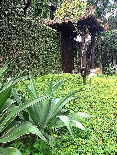 Căn nhà có khu vườn từng được đi vào những bài hát của Hồng Nhung trong đĩa 'Khu vườn yên tĩnh'.
