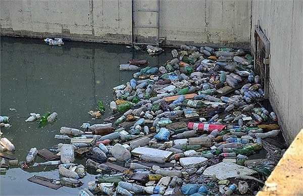Rác thải ứ đọng trên những con sông, lạch ở Sochi