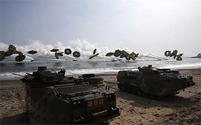 Xe thiết giáp đổ bộ LVT-7 của hải quân Hàn Quốc