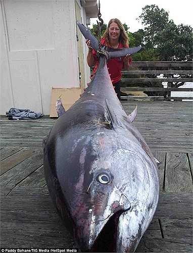 Bà Donna Pascoe, 56 tuổi đã câu được con cá ngừ nặng 411.6kg
