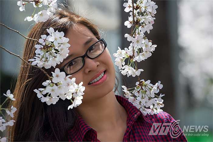 Một thiếu nữ người Việt tạo dáng bên hoa anh đào.