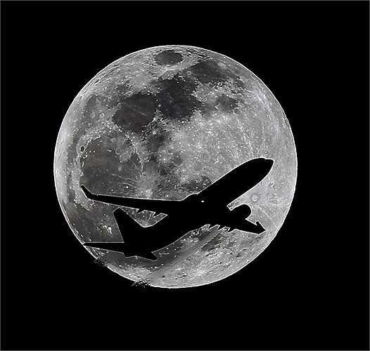 Còn đây là khoảnh khắc một chiếc máy bay bay ngang qua mặt trăng sáng ngời tại Whitier - California (Mỹ). Hình ảnh này được ghi lại khoảng 1 giờ trước khi diễn ra nguyệt thực toàn phần.