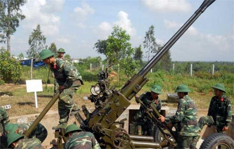 Pháo phòng không Type 65 thiết kế với 2 nòng pháo cỡ 37 mm, vận hành hoàn toàn bằng tay (khẩu đội pháo gồm 7-9 người). Việc ngắm bắn mục tiêu phụ thuộc vào kính quang học nhìn ban ngày, không có radar hỗ trợ.
