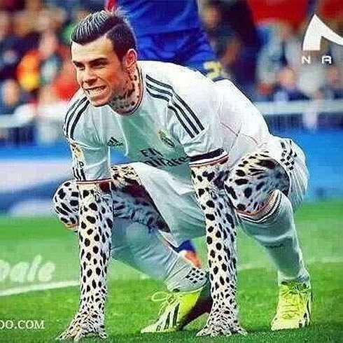 Phải chăng Bale mang gen của báo đốm?
