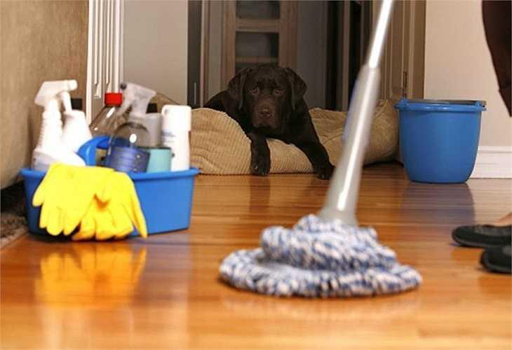 Vệ sinh phòng ở của người bệnh: Lau sàn phòng, bàn ghế, tủ giường, đồ chơi của người bệnh hàng ngày bằng nước Javel, hoặc dung dịch Cloramin B, sau đó rửa lại bằng nước sạch. Đối với những đồ vật nhỏ có thể đem phơi nắng.