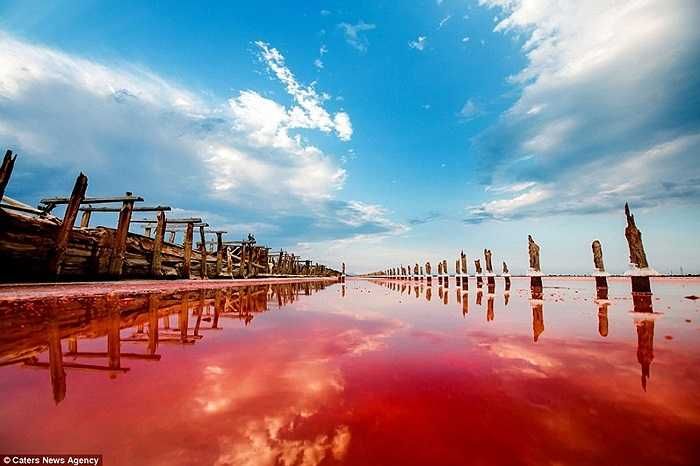 Khu vực này còn được gọi là hồ Sivash, nơi tạo ra rất nhiều muối tự nhiên