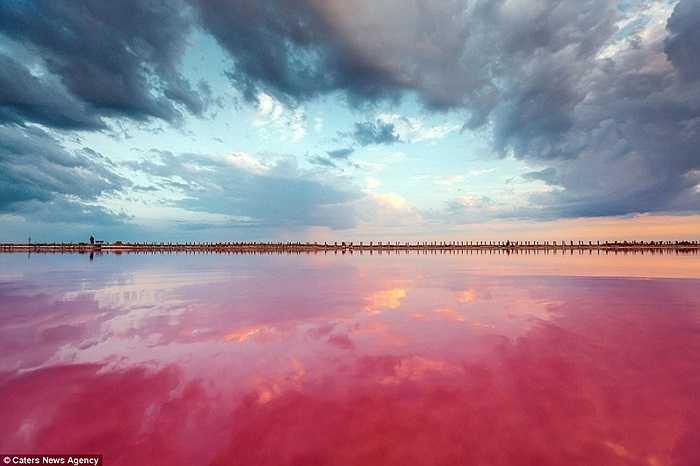 Bầu trời và mặt nước ở hồ Sivash, Crưm