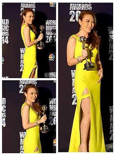 Giải thưởng này nằm trong World Music Awards 2014.