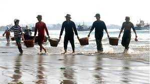 Ngư dân Quảng Ngãi nắm chặt tay nhau bám biển (Ảnh: vn