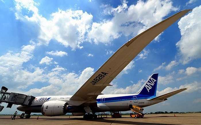 Boeing 787 Dreamliner sử dụng nguyên liệu composit nhẹ, cánh cao hơn, động cơ do hãng Roll Royce sản xuất với 1000 mã lực, cách thiết kế mới nhất, động cơ 787 khuyến khích luồng khí laminar thổi trên phần lớn bề mặt động cơ so với các máy bay thông thường, do đó tiết kiệm nhiên liệu hơn các máy bay khác 20%.
