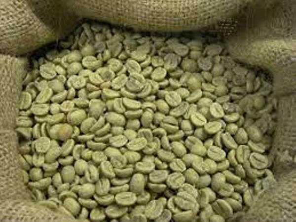 Hạt cà phê tươi có thể gây ra hội chứng tán huyết, dị ứng, mệt mỏi, thiếu máu và các triệu chứng khác.