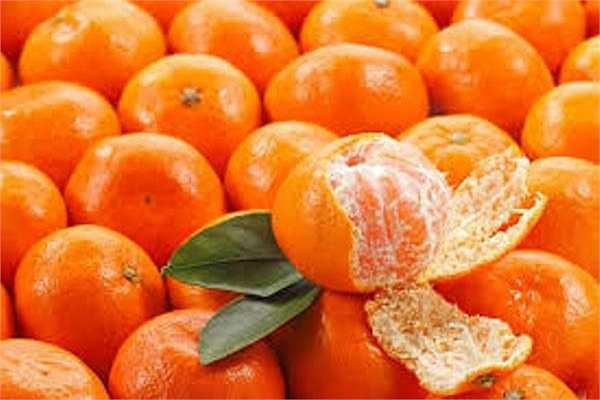 Căn cứ vào nghiên cứu của các chuyên gia Việt Nam, một ngày không nên ăn quá 3 quả quýt. Vì nhu cầu vitamin C cần cho mỗi người trong ngày 3 quả quít là đủ. Nếu ăn nhiều có hại cho vòm miệng và răng.