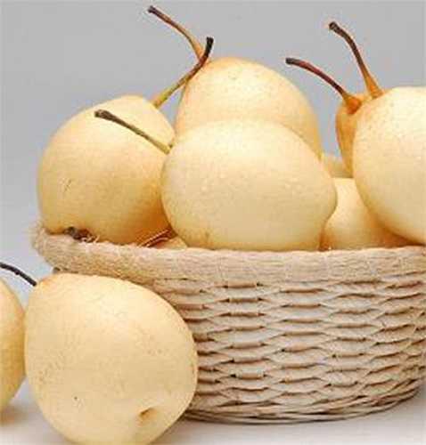 Giống như táo, lê là loại trái cây phải phun thuốc liên tục để tránh ve, rệp vừng, trứng bướm và vô số các loài côn trùng gây hại khác.