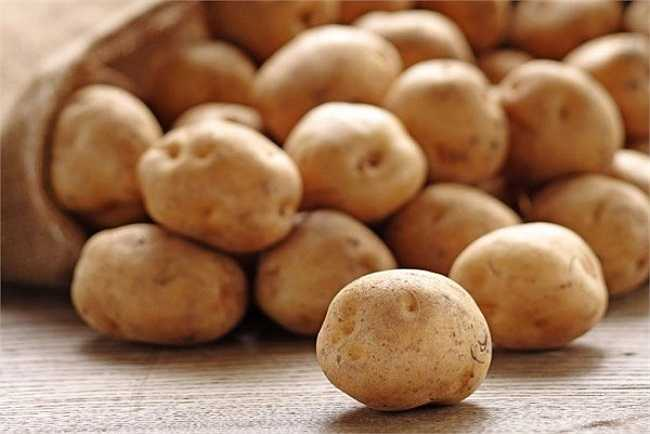 Khoai tây nảy mầm. Mầm khoai tây có chứa solanine, một loại glyco-alkaloid đắng và độc. Solanine có thể xuất hiện một cách tự nhiên trong bất cứ bộ phận nào của cây, bao gồm cả lá, quả và củ. Nó rất độc, thậm chí với hàm lượng rất nhỏ.