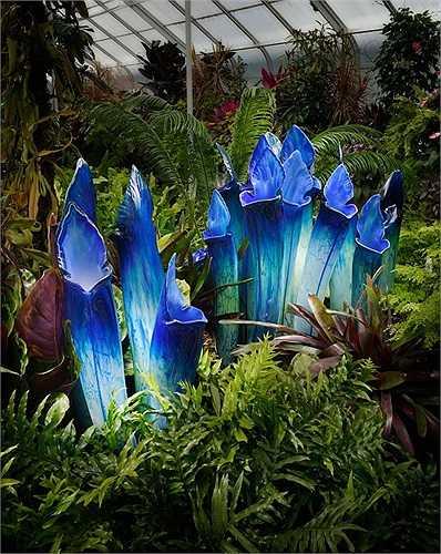 Để tạo nên một bông hoa kính ấn tượng, nghệ nhân Gamrath sử dụng rất nhiều bột kính (kính đã được nghiền ra thành bột) và một ống thổi thủy tinh.