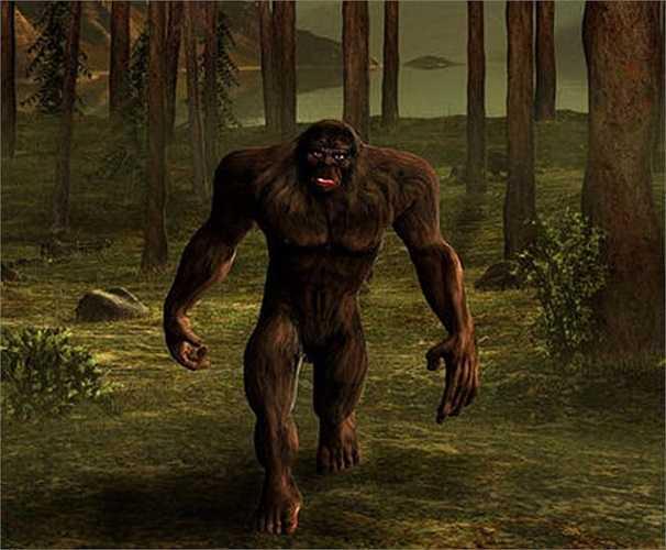 Nhà ngoại cảm Linda Jo Martin cho rằng Bigfoot là những hồn ma nên chúng ta chỉ có thể nhìn thấy mà không thể chạm đến hay thu thập được bất cứ dấu vết nào của họ.