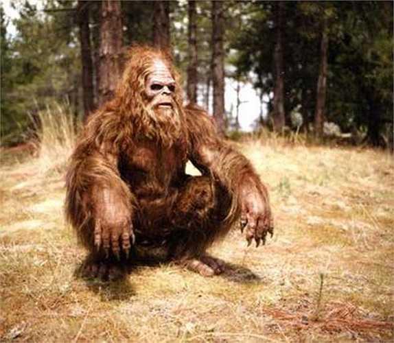 Một số người theo thiên chúa giáo tin rằng Bigfoot là con cháu của nhân vật Cain trong kinh thánh. Những đứa trẻ này bị bỏ rơi và lang thang trong những khu rừng ở Bắc Mỹ