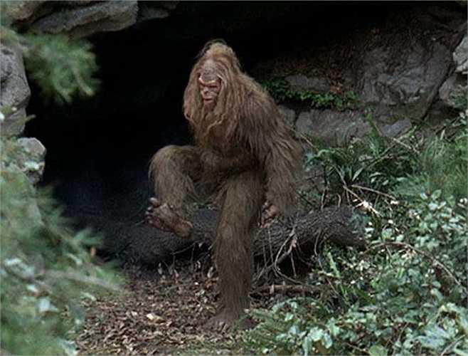Vì muốn tránh sự dòm ngó của con người nên cách tốt nhất là các Bigfoot sẽ sống ẩn mình trong các hang động và chỉ ra khỏi hang khi thực sự cần thiết.