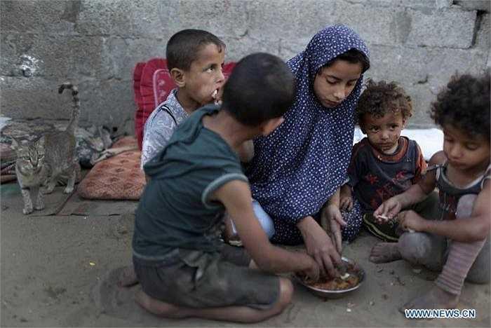 Còn đây là cảnh 5 anh chị em trong một gia đình đang tranh nhau một bát thức ăn ít ỏi, dưới nền nhà chỉ toàn là cát. Ảnh chụp ngày 3/6.