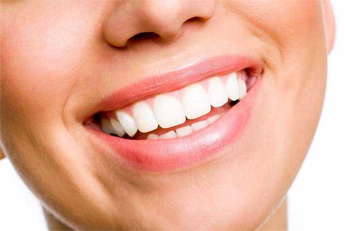 Tại viện Wyss của Harvard, người ta đã thành công trong việc tái tạo răng chuột từ tế bào gốc. Sẽ là một cuộc cách mạng trong nha khoa khi bác sĩ chỉ cần kích thích để tế bào gốc dưới chân răng tái tạo thành chiếc răng mới thay thế, thậm chí trong tương lai xương cũng có thể được tái tạo theo cách này.