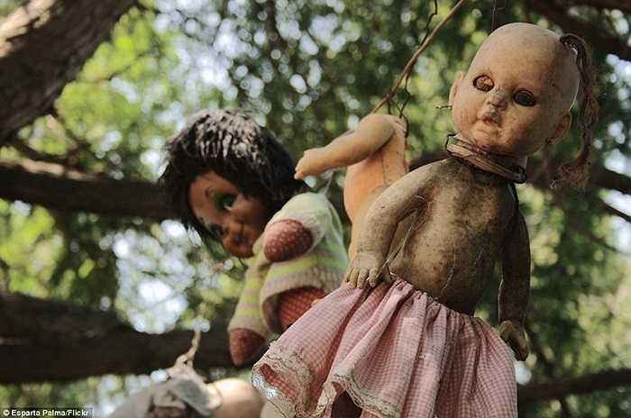 Những con búp bê ma quái trên hòn đảo kỳ dị