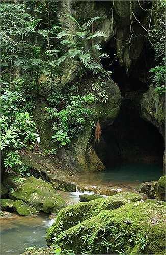 Được phát hiện năm 1989, hang Actun Tunichil Muknal (hay còn gọi là ATM) không phải nơi dễ dàng tìm đến. Những du khách dũng cảm, ưa mạo hiểm phải lái xe hơn 1 giờ đồng hồ từ San Ignacio ở Belize rồi đi bộ thêm một giờ nữa vượt sông sâu, rừng hiểm mới tới miệng hang.