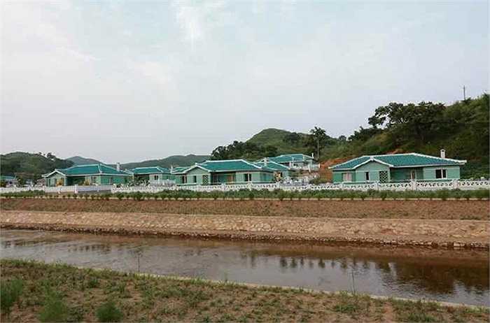 Trang trại chăn nuôi số 621 của quân đội Triều Tiên mới được xây dựng