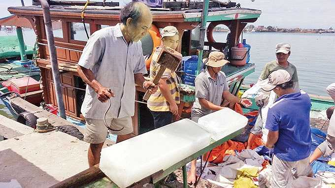 Tàu BĐ 93160 của một ngư dân Bình Định trúng một mẻ khá đậm, được 7,7 tấn cá, bán trọn cho tàu hậu cần. Hơn 15 tấn cá chất đầy trong 15 khoang tàu, ướp bằng đá lạnh cùng nước biển mặn. Thuyền trưởng Chiến kéo ga, đạp sóng hướng vào Đà Nẵng