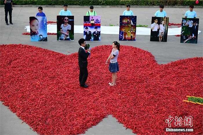 Màn cầu hôn lãng mạn của anh thu hút sự chú ý của nhiều người