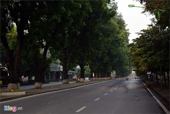 Dọc suốt tuyến phố chỉ còn là hàng cây im lìm và một không khí yên lặng bao trùm.