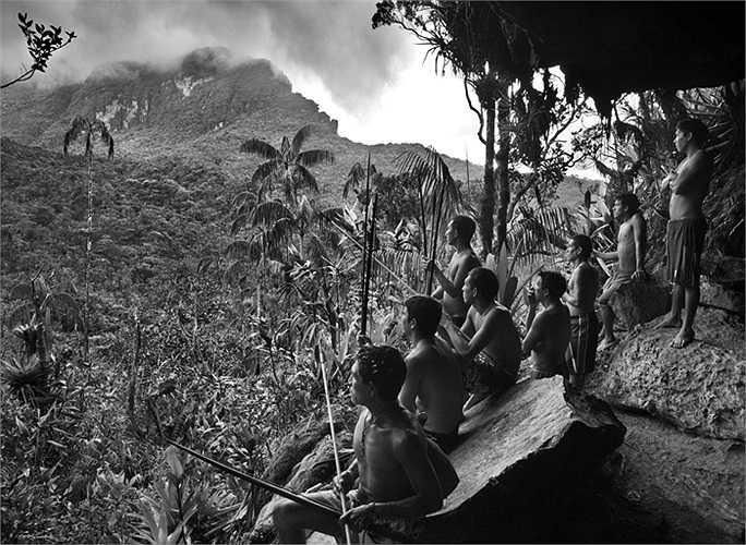Các chiến binh người Yanomami nhìn ra khu rừng ở Pico da Neblina với độ cao 3km tính từ mực nước biển