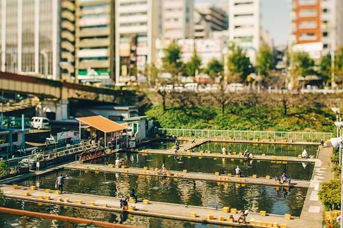 Khu vực câu cá ở Ichigaya cũng bị hiệu ứng của ống kính làm biến dạng