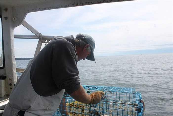 Mặc dù vậy, vị thuyền trưởng này tuyên bố sẽ không bao giờ từ bỏ công việc. 'Đây là cách sống của tôi và tôi thích đánh bắt tôm. Và tôi sẽ tiếp tục làm cho đến khi tôi không thể làm được nữa', ông nói.