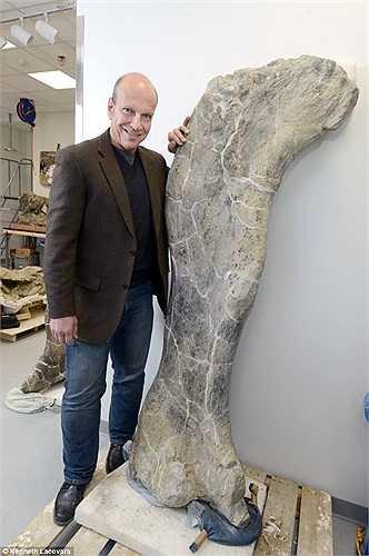 Cho tới tận bây giờ, những loài động vật lớn nhất từng xuất hiện trên Trái Đất vẫn còn là một bí ẩn với giới khoa học. Việc phát hiện Dreadnoughtus vì thế có ý nghĩa vô cùng quan trọng. Trong ảnh, tiến sĩ Lacorava đứng cạnh đốt xương đùi của khủng long.