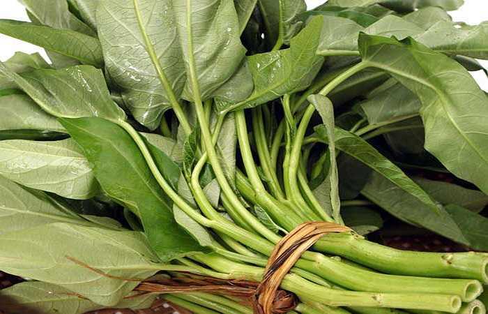 Rau bina: Những thực phẩm giàu kẽm nằm nhiều nhất trong các loại thực phẩm có tính kiềm. Chúng ngăn chặn tiêu hao cơ bắp và xương chắc khỏe.