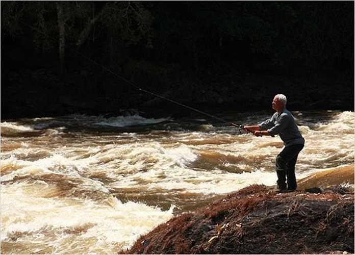 Wade thả dây câu trên sông Courantyne, phía Bắc của Nam Mỹ