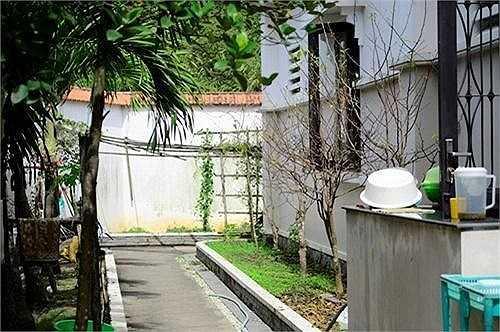 Lối đi quanh nhà được Việt Trinh trồng cây cảnh.