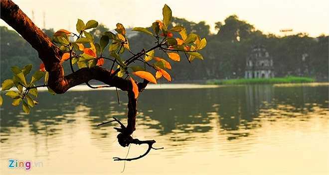 Nói đến Hà Nội không thể không nhắc đến hồ Gươm huyền thoại, nơi mang dấu ấn lịch sử với câu chuyện về vua Lê Thái Tổ mượn gươm báu đánh tan giặc Minh ở thế kỷ 15. Được coi như trái tim thủ đô, nơi đây hàng chục năm qua trở thành điểm vui chơi, ngắm cảnh của người dân thành phố cũng như du khách thập phương.