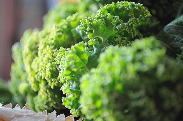 Ăn rau bina luộc hoặc nấu chín là tốt nhất, tuy nhiên, ăn quá nhiều rau bina có thể dẫn đến sự hình thành sỏi thận hoặc bệnh gút. Đặc biệt là những người có hàm lượng canxi oxalate cao nên tránh ăn rau bina.