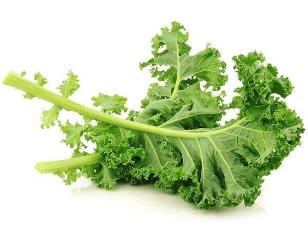 Ngoài việc có lợi cho sức khỏe như làm giảm cholesterol và ngăn ngừa ung thư, cải xoăn cũng rất giàu vitamin K.